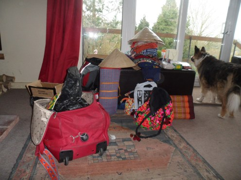 What was the weight limit! Wellie the dog was home all the time!