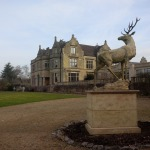 a stag arrives at Old Down Manor