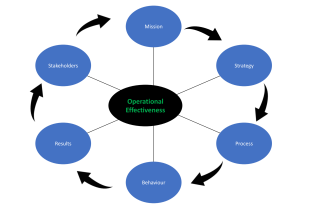 Business Effectiveness and Enlightenment Sessions cover all business aspects